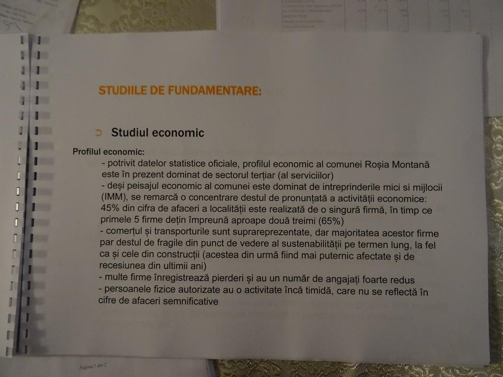 pag 4 studiul economic