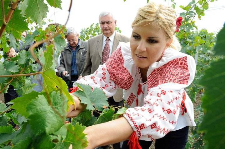 DOSAR Elena Udrea. Cât de performantă a fost ca ministru. Episodul III. Nereguli cu peste o sută de milioane de euro din fonduri europene. Și consecințele